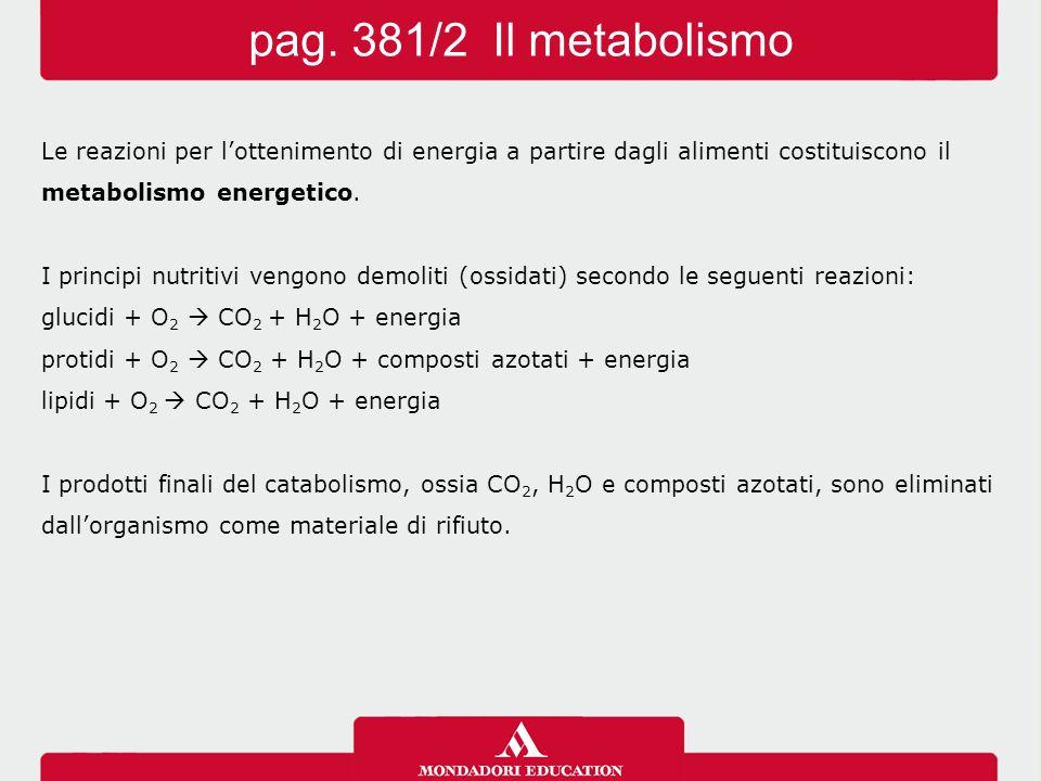 pag. 381/2 Il metabolismo Le reazioni per l'ottenimento di energia a partire dagli alimenti costituiscono il.