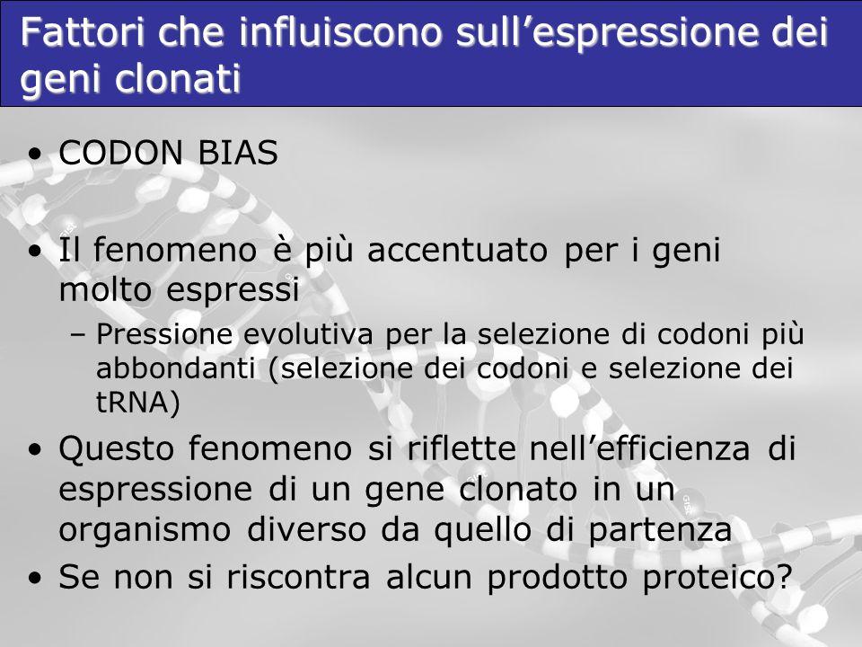 Fattori che influiscono sull'espressione dei geni clonati