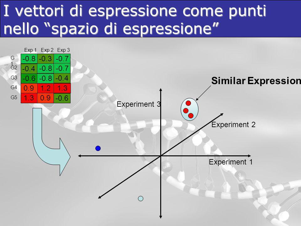 I vettori di espressione come punti nello spazio di espressione