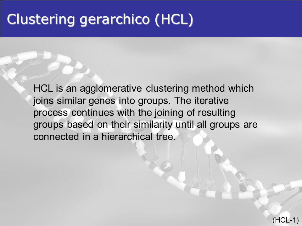Clustering gerarchico (HCL)
