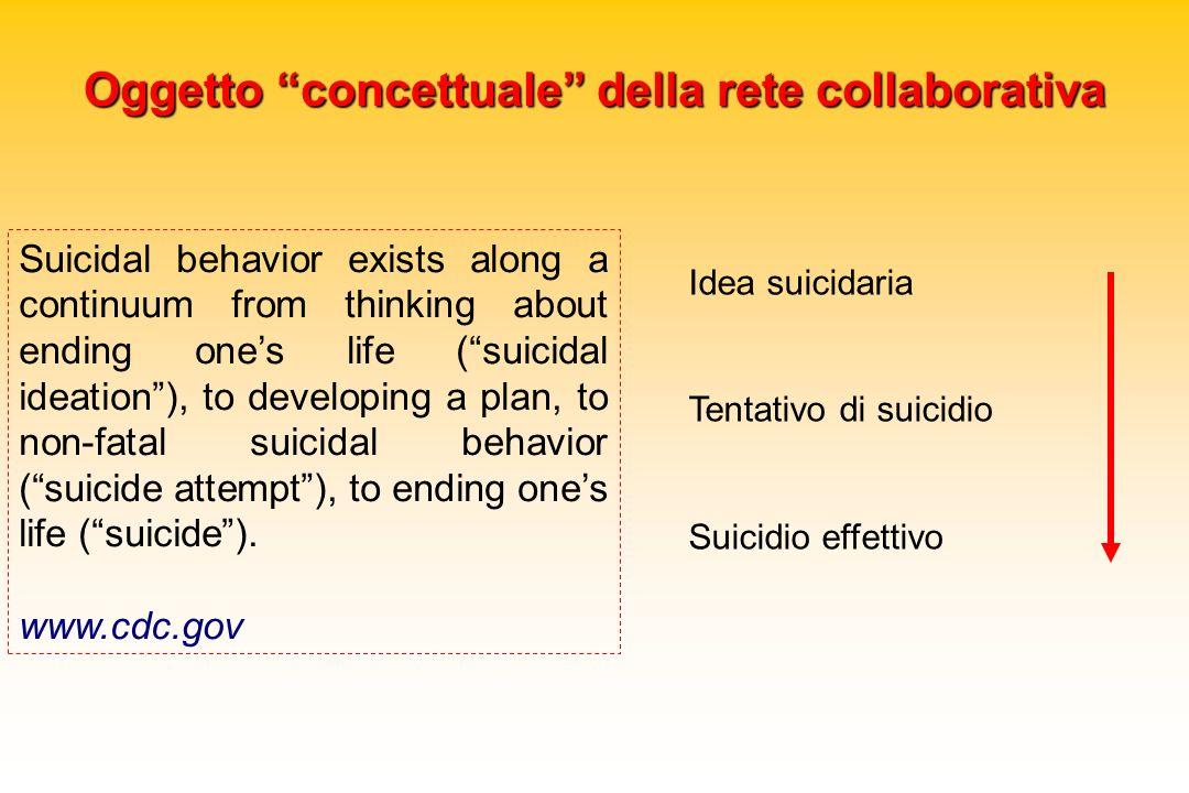 Oggetto concettuale della rete collaborativa