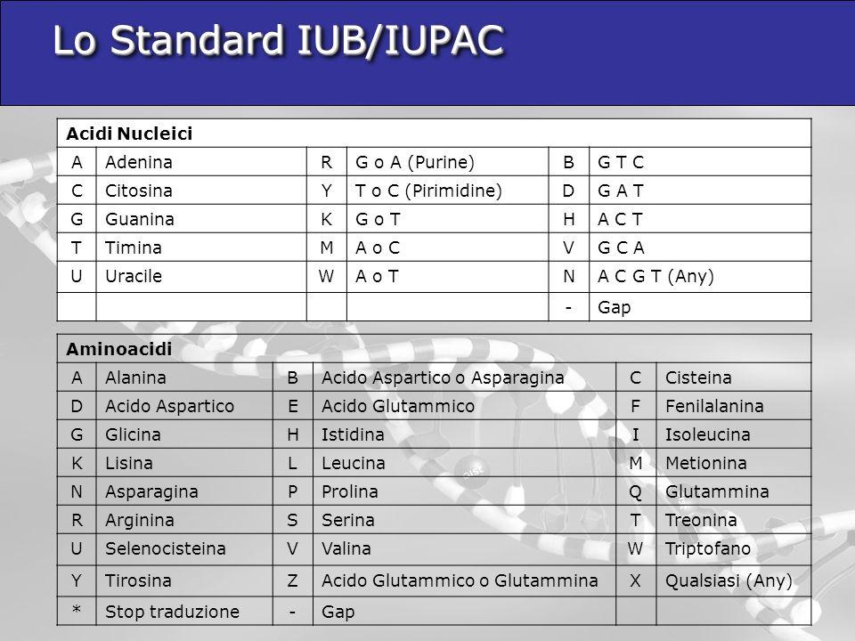 Lo Standard IUB/IUPAC Acidi Nucleici A Adenina R G o A (Purine) B