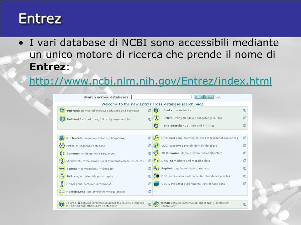 Entrez I vari database di NCBI sono accessibili mediante un unico motore di ricerca che prende il nome di Entrez: