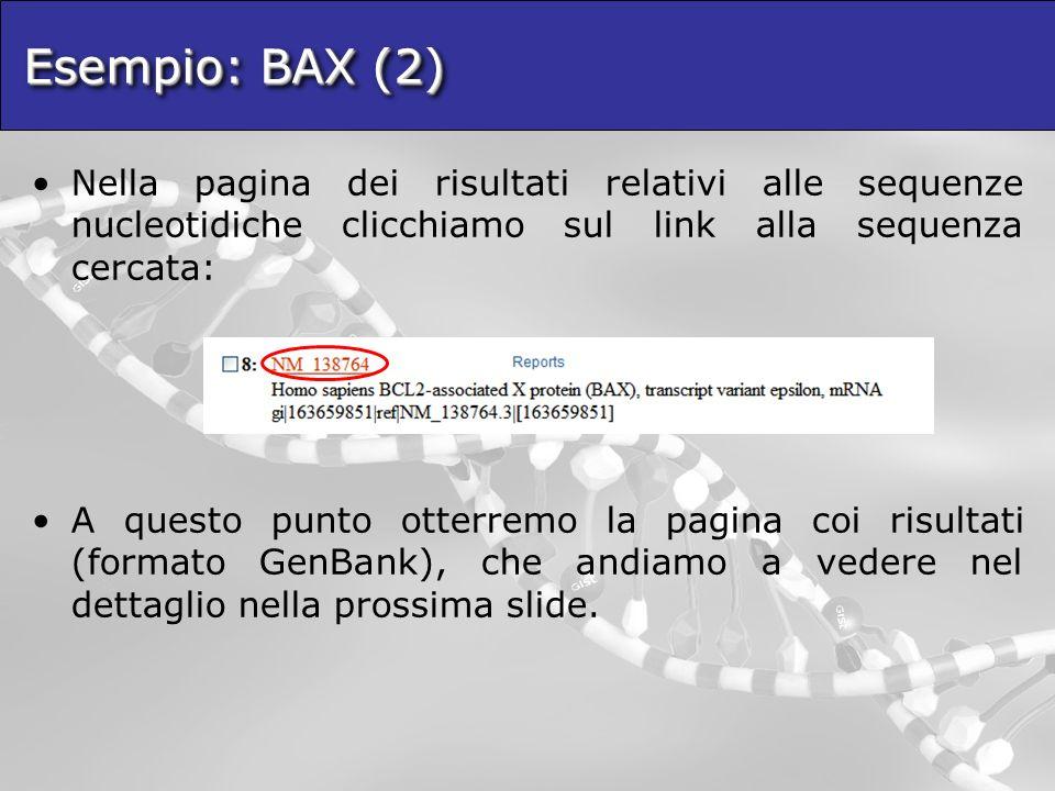 Esempio: BAX (2) Nella pagina dei risultati relativi alle sequenze nucleotidiche clicchiamo sul link alla sequenza cercata: