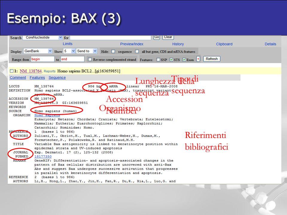 Esempio: BAX (3) Tipo di sequenza Lunghezza della sequenza