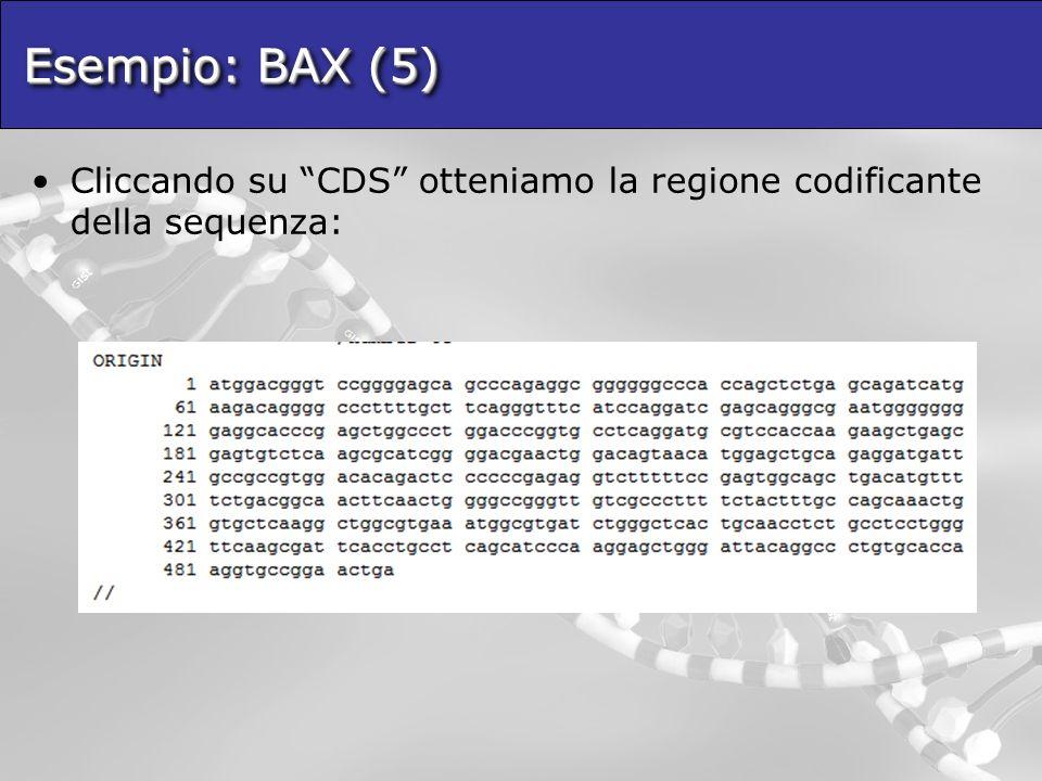 Esempio: BAX (5) Cliccando su CDS otteniamo la regione codificante della sequenza: