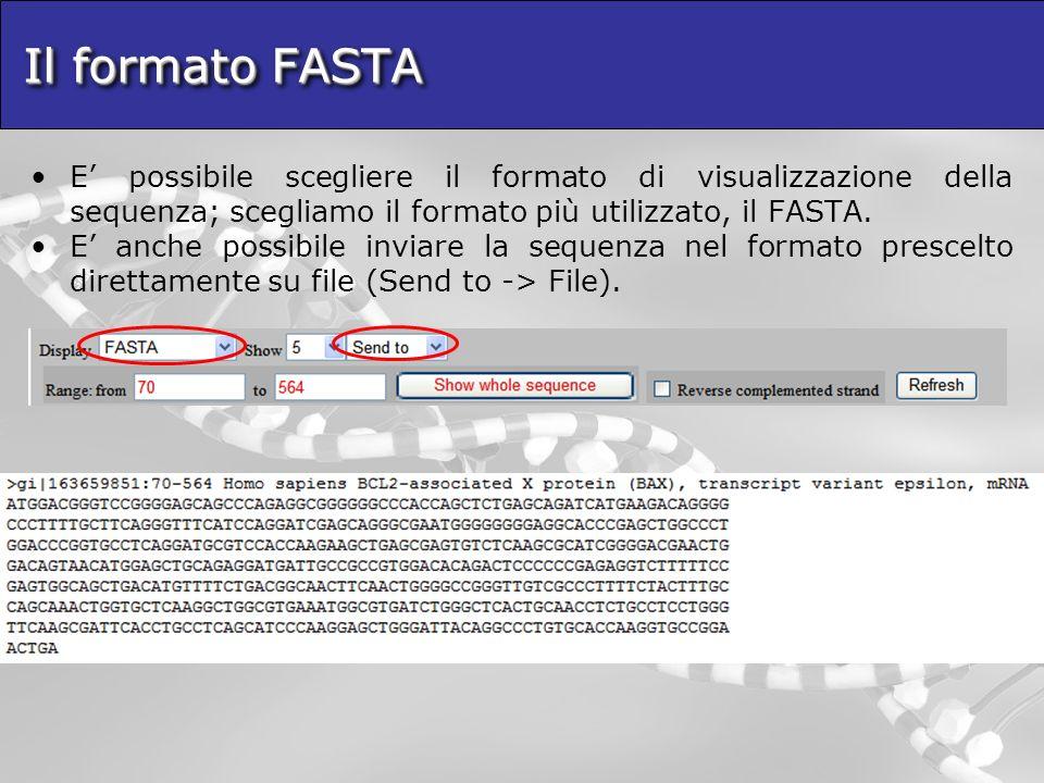 Il formato FASTA E' possibile scegliere il formato di visualizzazione della sequenza; scegliamo il formato più utilizzato, il FASTA.