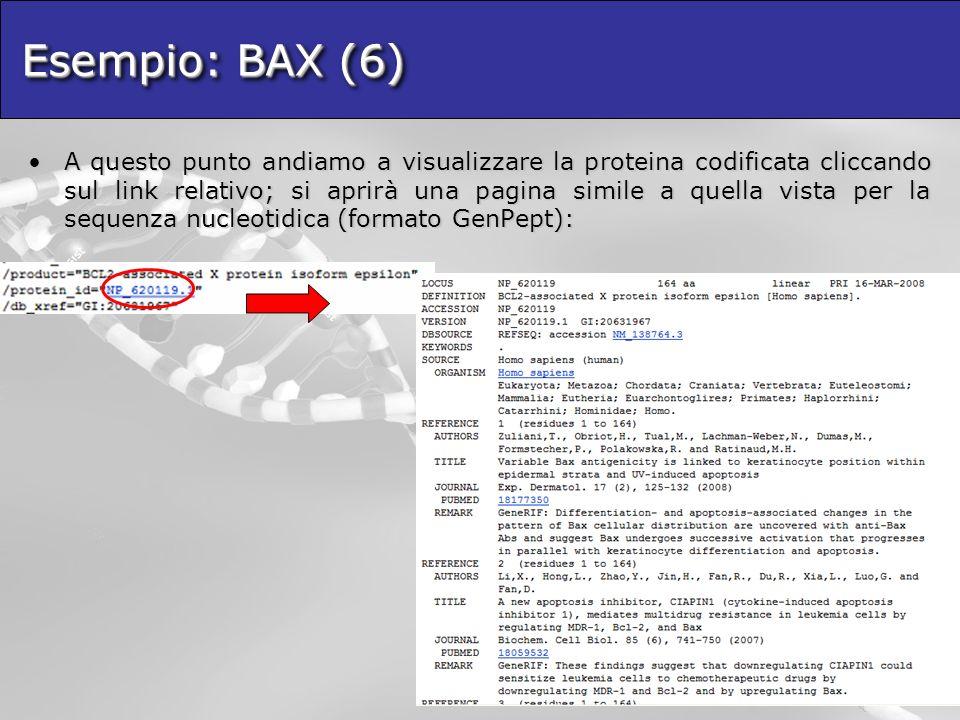 Esempio: BAX (6)