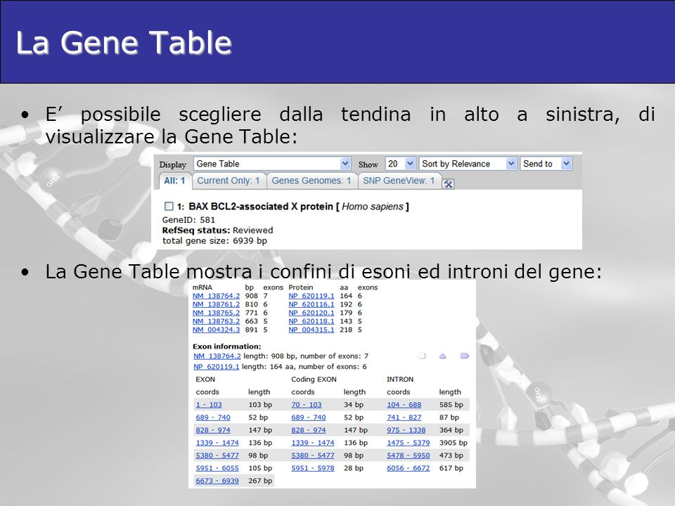La Gene Table E' possibile scegliere dalla tendina in alto a sinistra, di visualizzare la Gene Table: