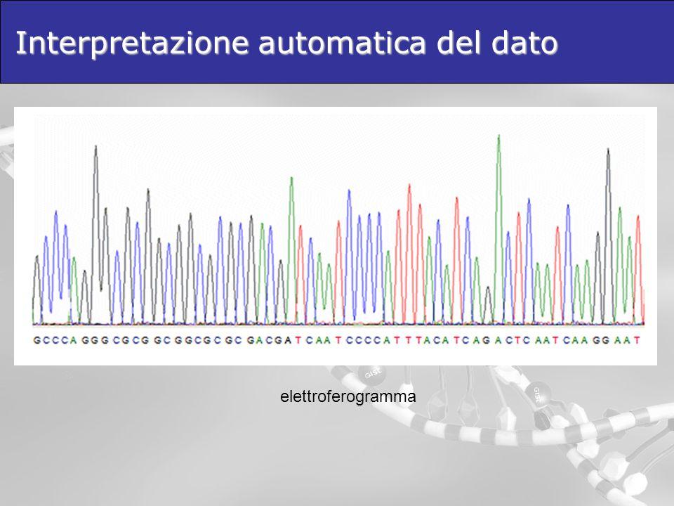 Interpretazione automatica del dato