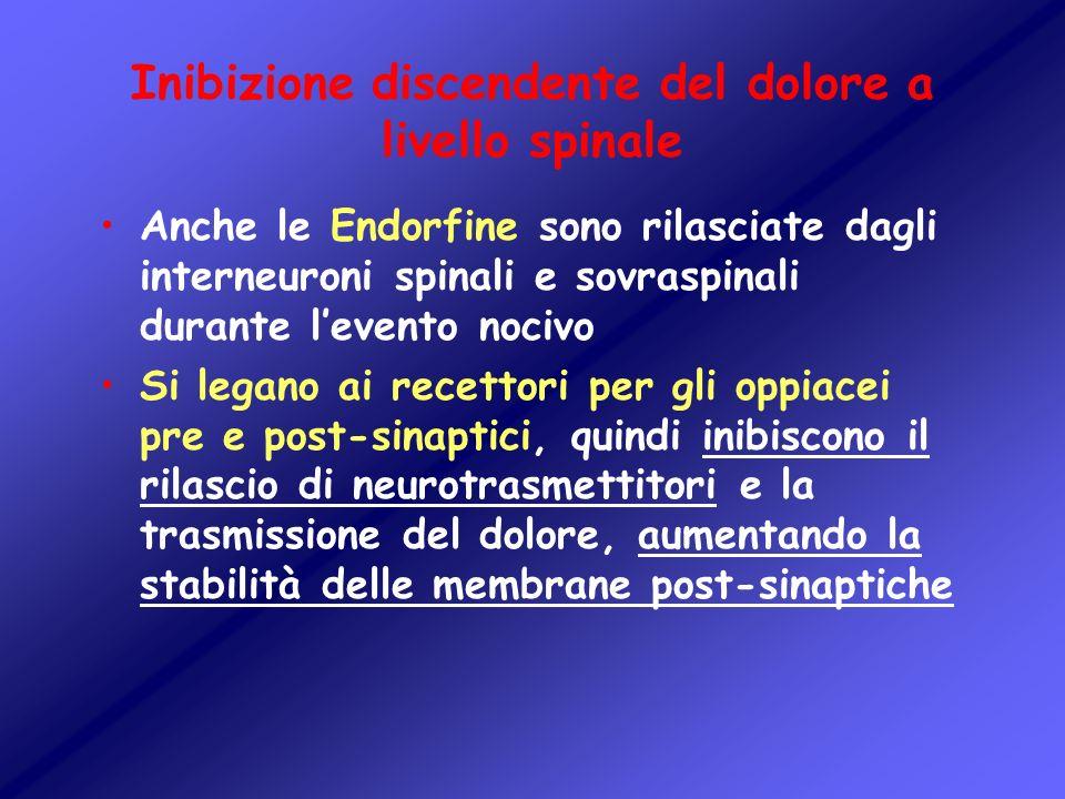 Inibizione discendente del dolore a livello spinale