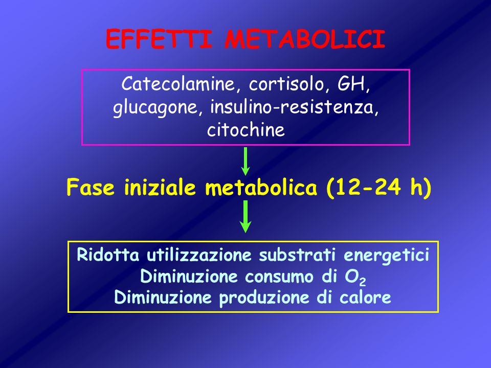 EFFETTI METABOLICI Fase iniziale metabolica (12-24 h)