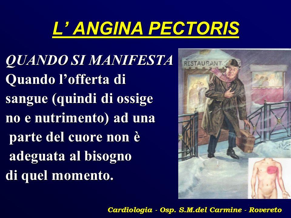 Cardiologia - Osp. S.M.del Carmine - Rovereto