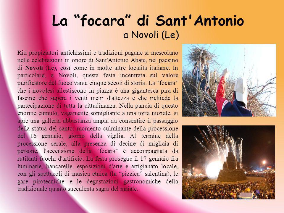 La focara di Sant Antonio