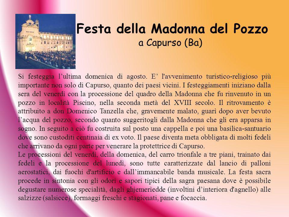Festa della Madonna del Pozzo