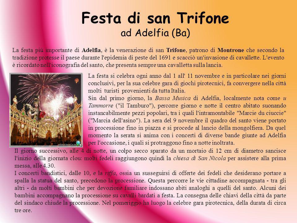 Festa di san Trifone ad Adelfia (Ba)