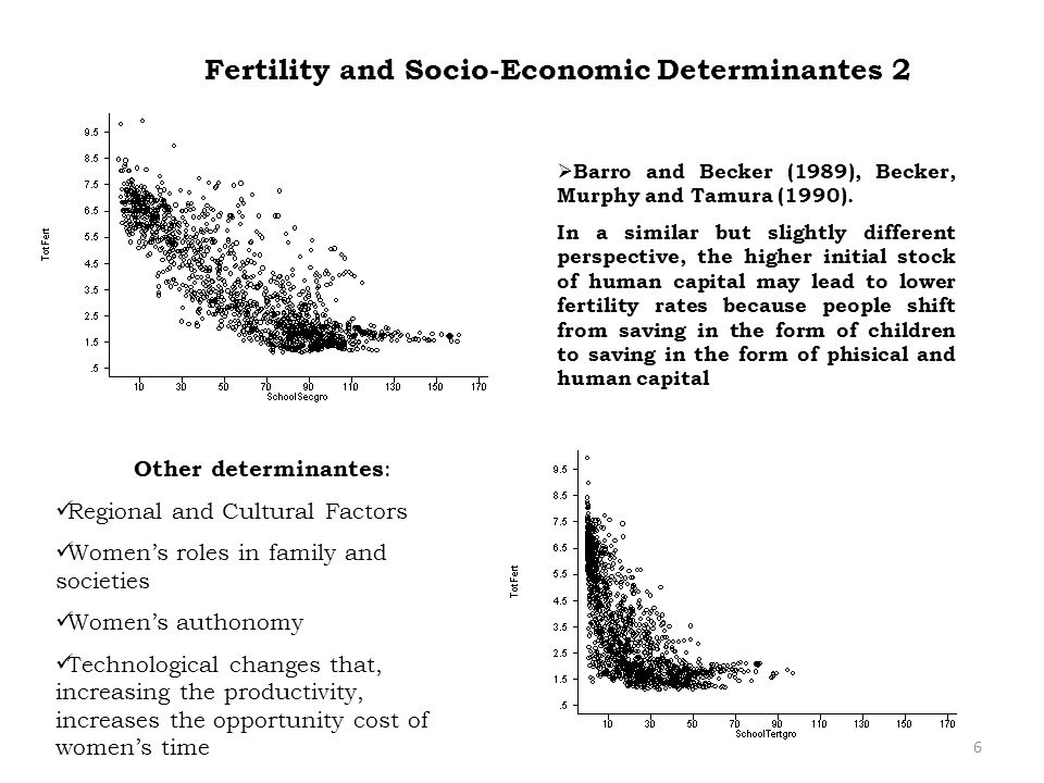 Fertility and Socio-Economic Determinantes 2