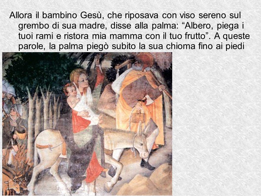 Allora il bambino Gesù, che riposava con viso sereno sul grembo di sua madre, disse alla palma: Albero, piega i tuoi rami e ristora mia mamma con il tuo frutto .
