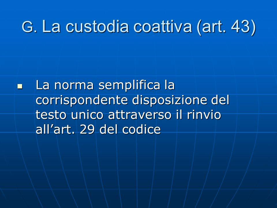 G. La custodia coattiva (art. 43)