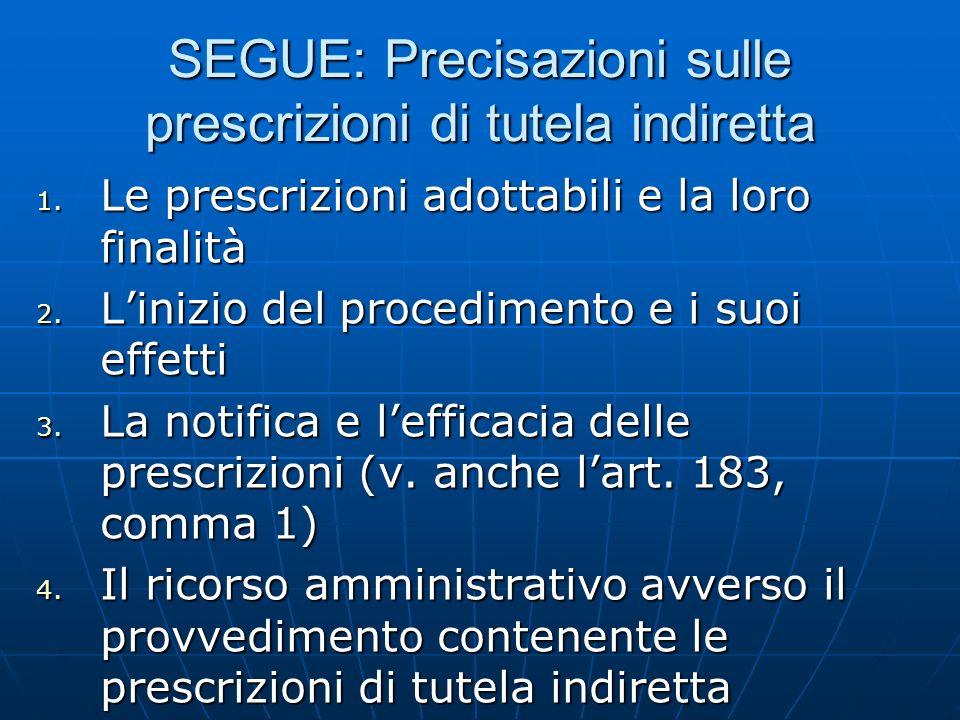 SEGUE: Precisazioni sulle prescrizioni di tutela indiretta