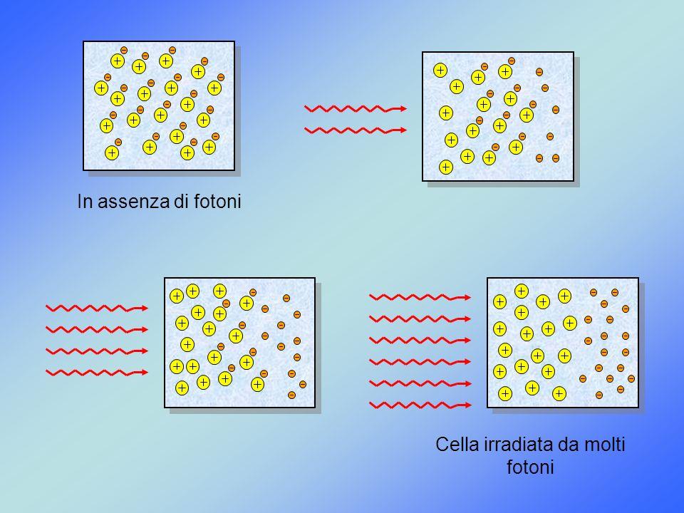 Cella irradiata da molti fotoni