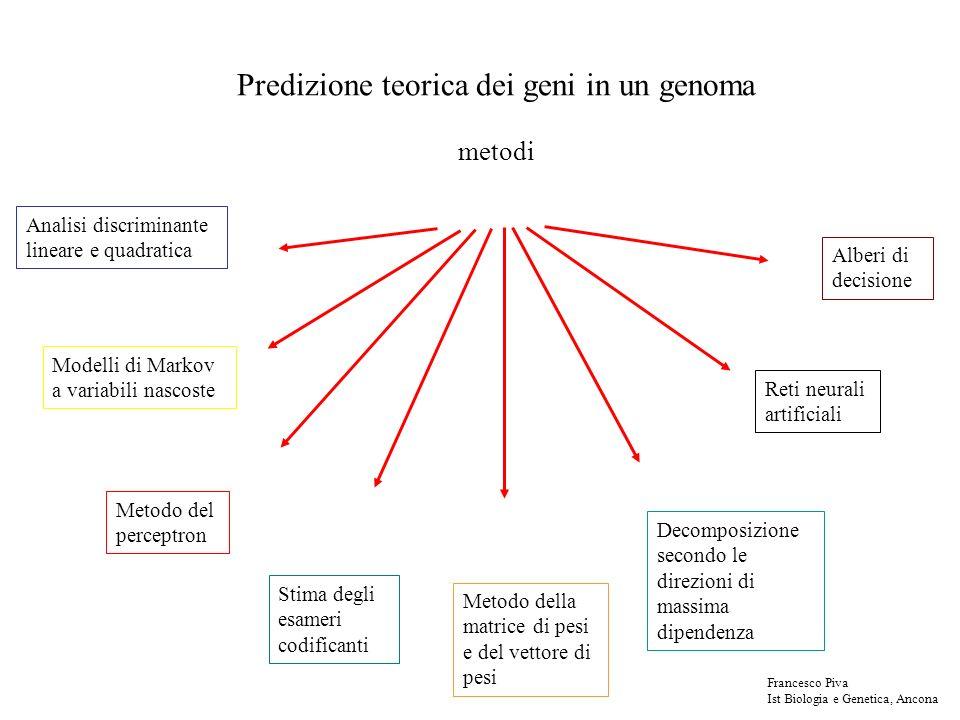 Predizione teorica dei geni in un genoma