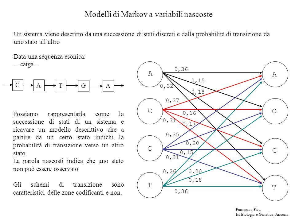 Modelli di Markov a variabili nascoste