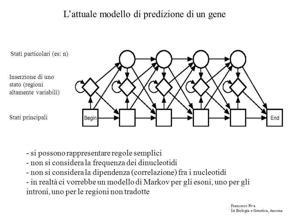 L'attuale modello di predizione di un gene