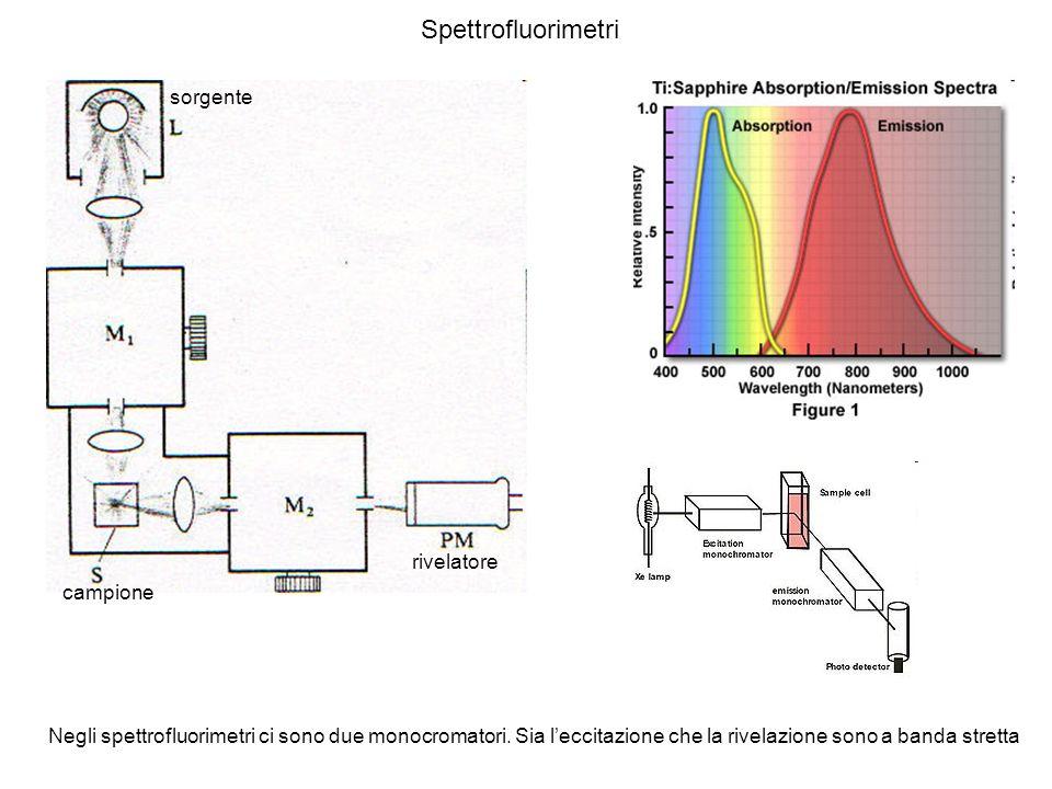 Spettrofluorimetri sorgente rivelatore campione