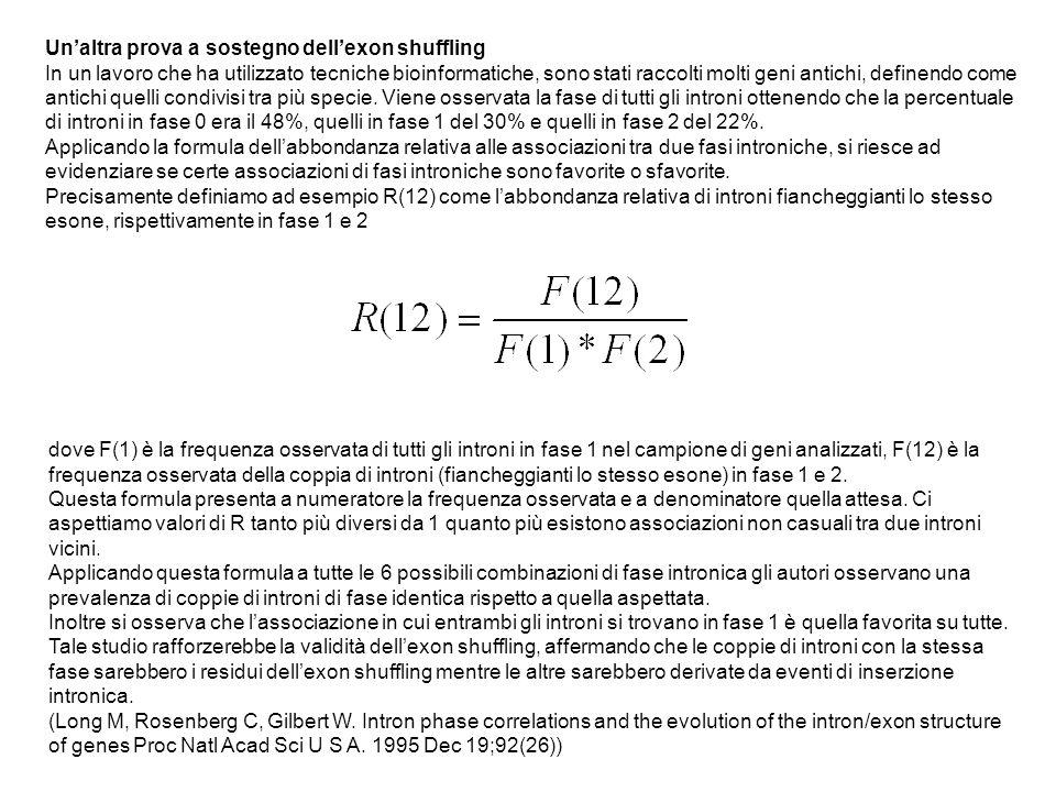 Un'altra prova a sostegno dell'exon shuffling