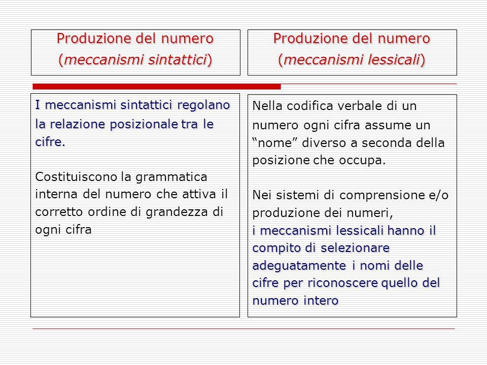 (meccanismi sintattici) Produzione del numero (meccanismi lessicali)