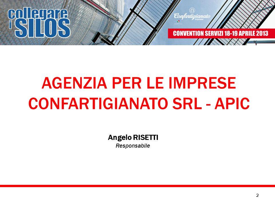 CONFARTIGIANATO SRL - APIC