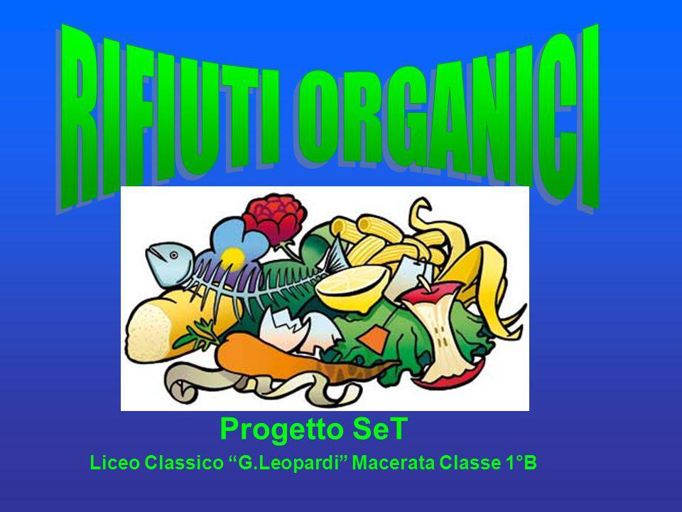 Liceo Classico G.Leopardi Macerata Classe 1°B