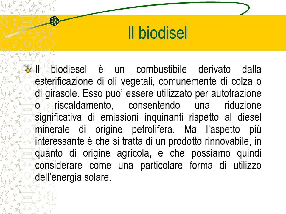 Il biodisel