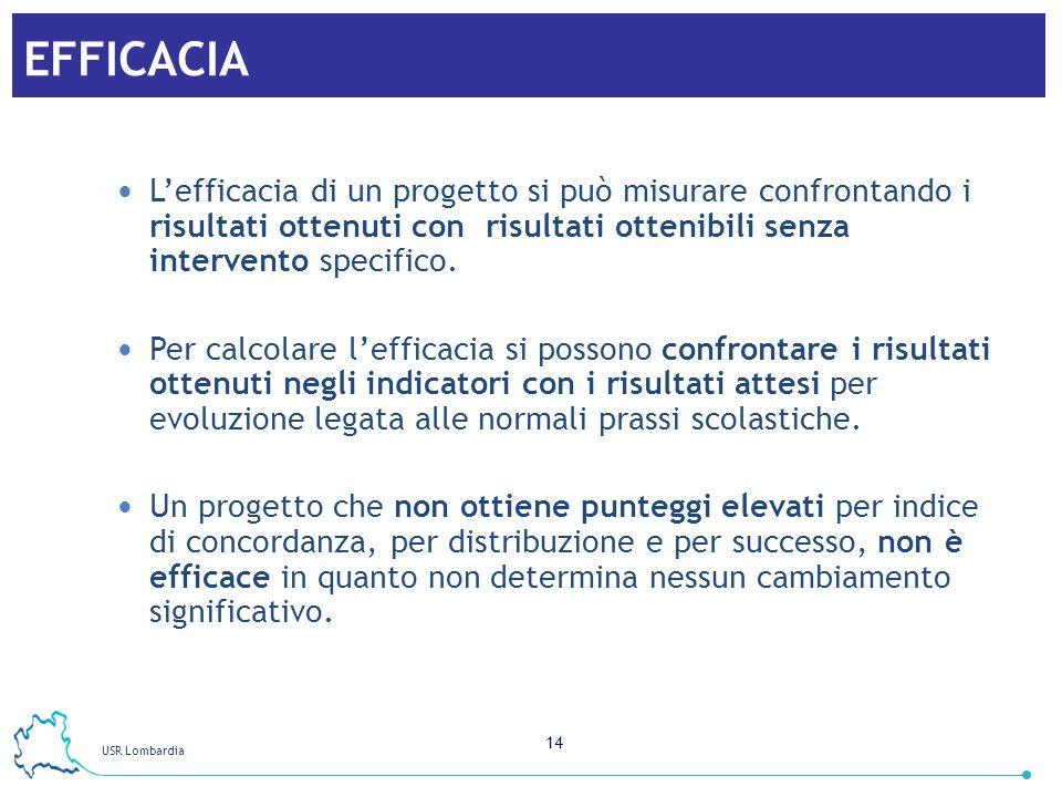 EFFICACIA L'efficacia di un progetto si può misurare confrontando i risultati ottenuti con risultati ottenibili senza intervento specifico.