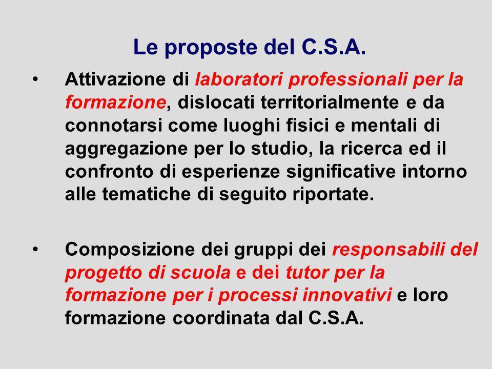 Le proposte del C.S.A.