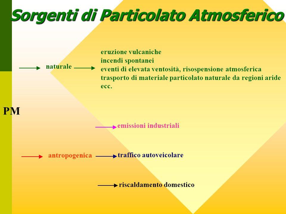 Sorgenti di Particolato Atmosferico