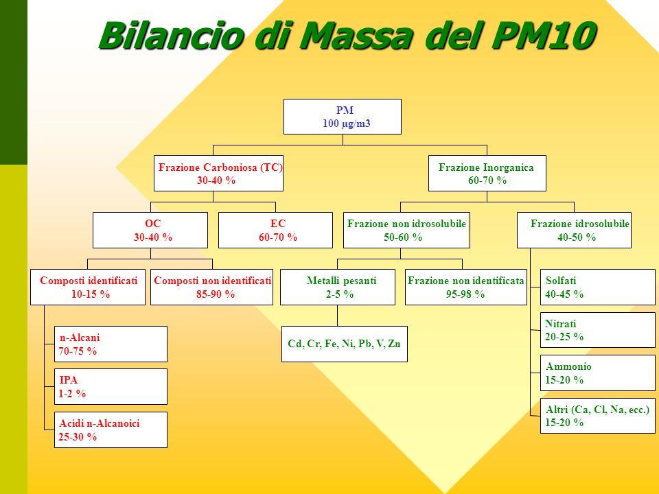 Bilancio di Massa del PM10