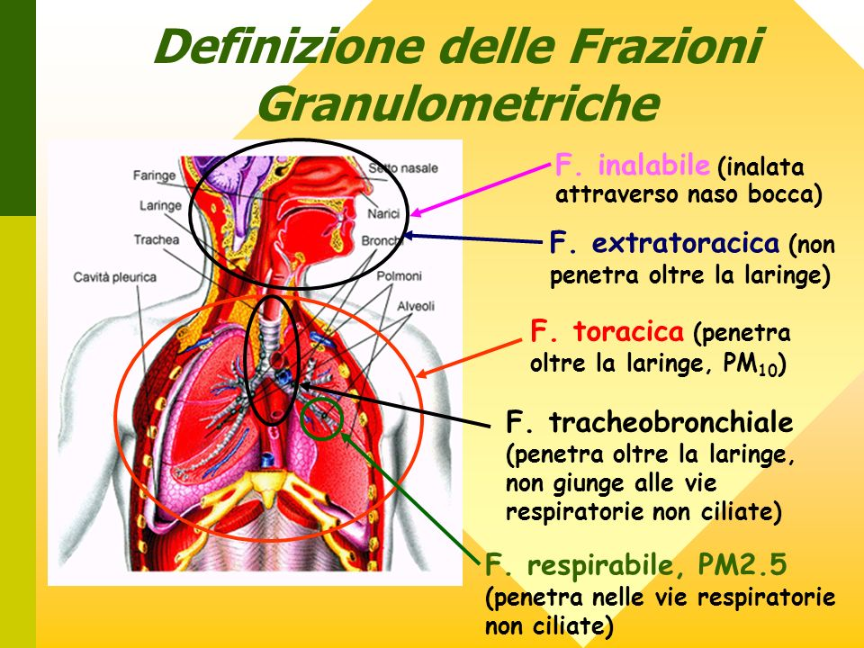 Definizione delle Frazioni Granulometriche