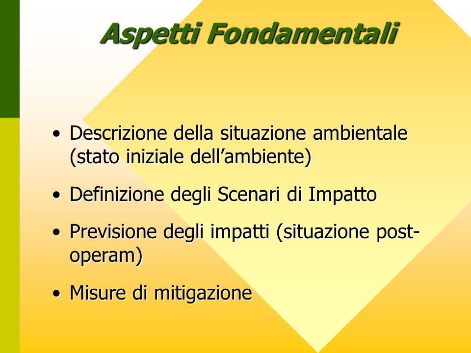 Aspetti Fondamentali Descrizione della situazione ambientale (stato iniziale dell'ambiente) Definizione degli Scenari di Impatto.