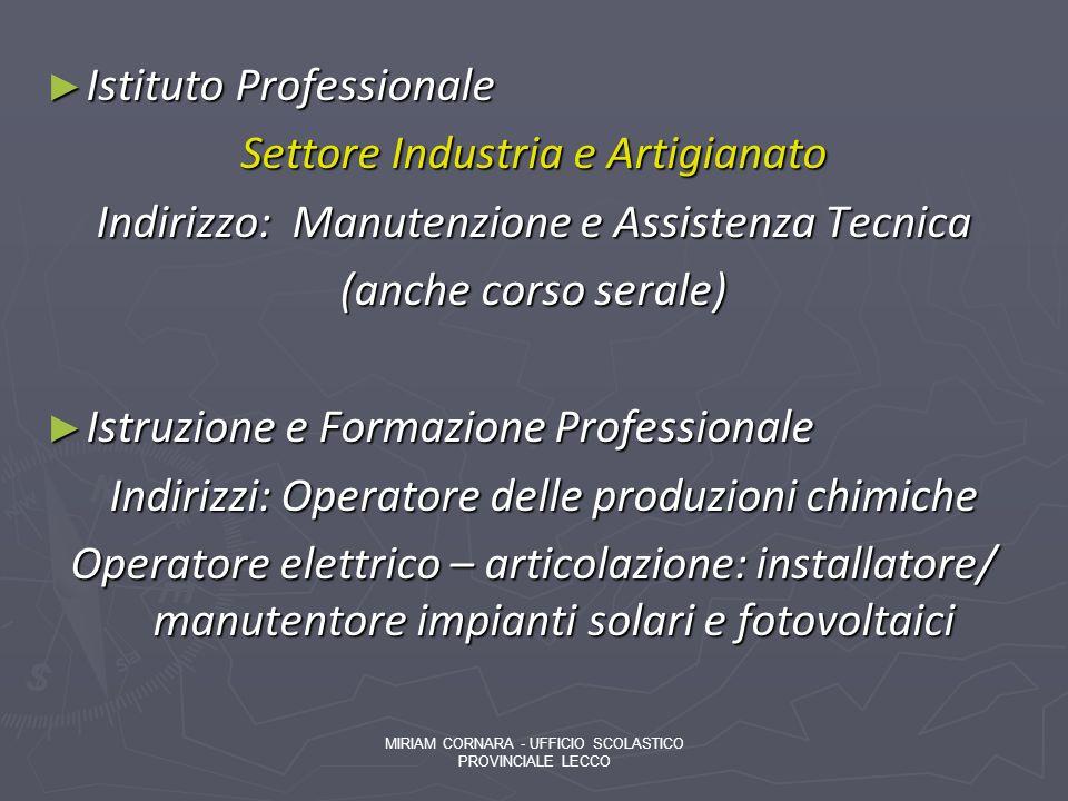 Istituto Professionale Settore Industria e Artigianato