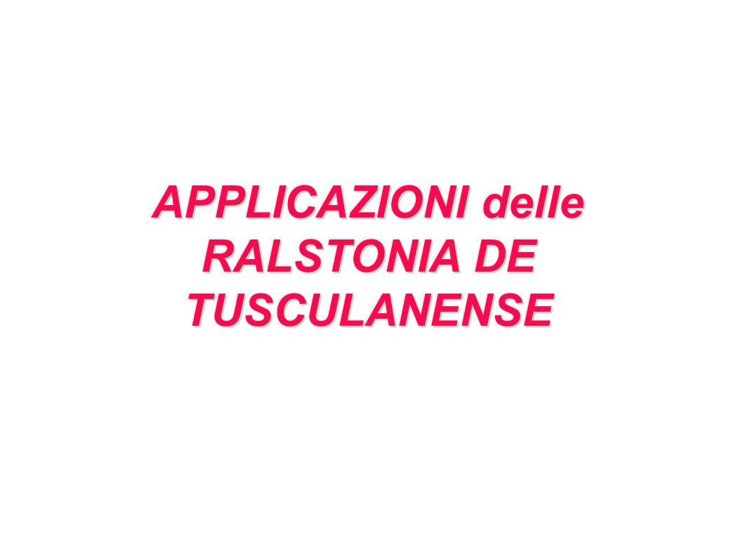 RALSTONIA DE TUSCULANENSE
