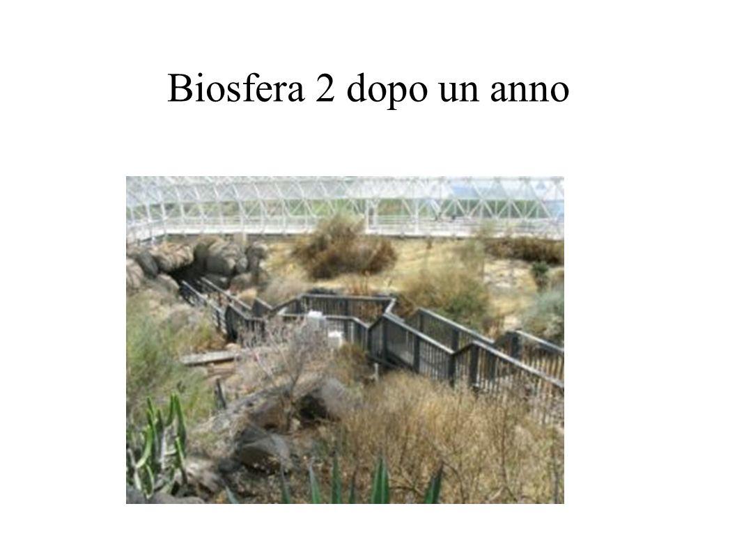 Biosfera 2 dopo un anno