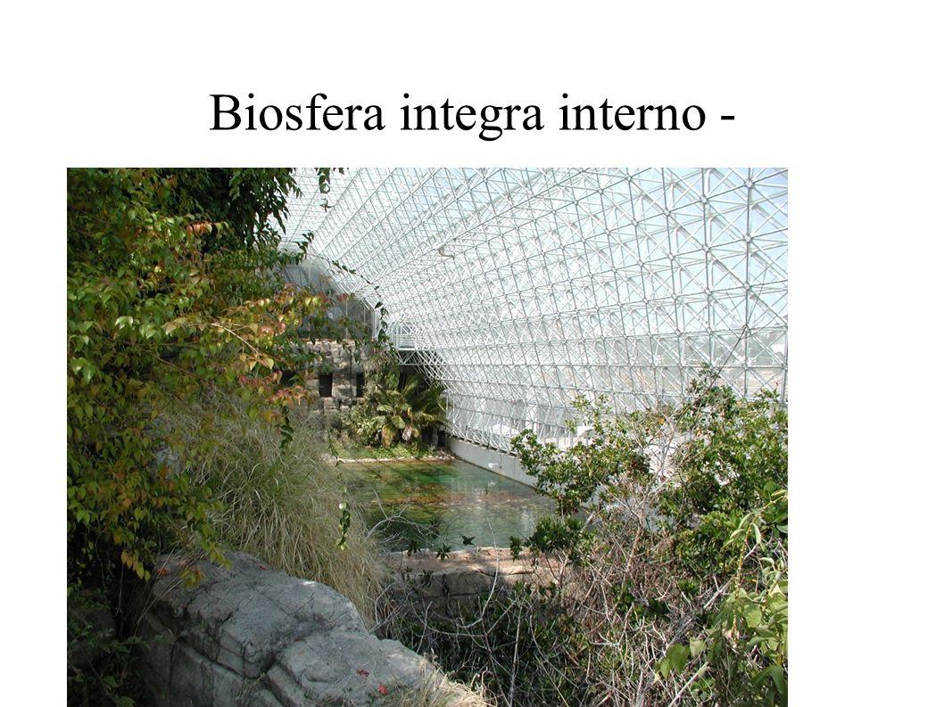 Biosfera integra interno -