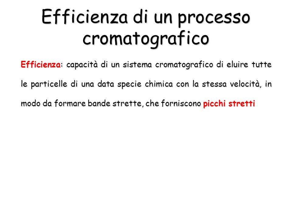 Efficienza di un processo cromatografico