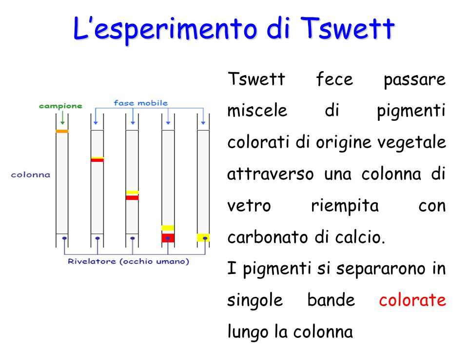 L'esperimento di Tswett