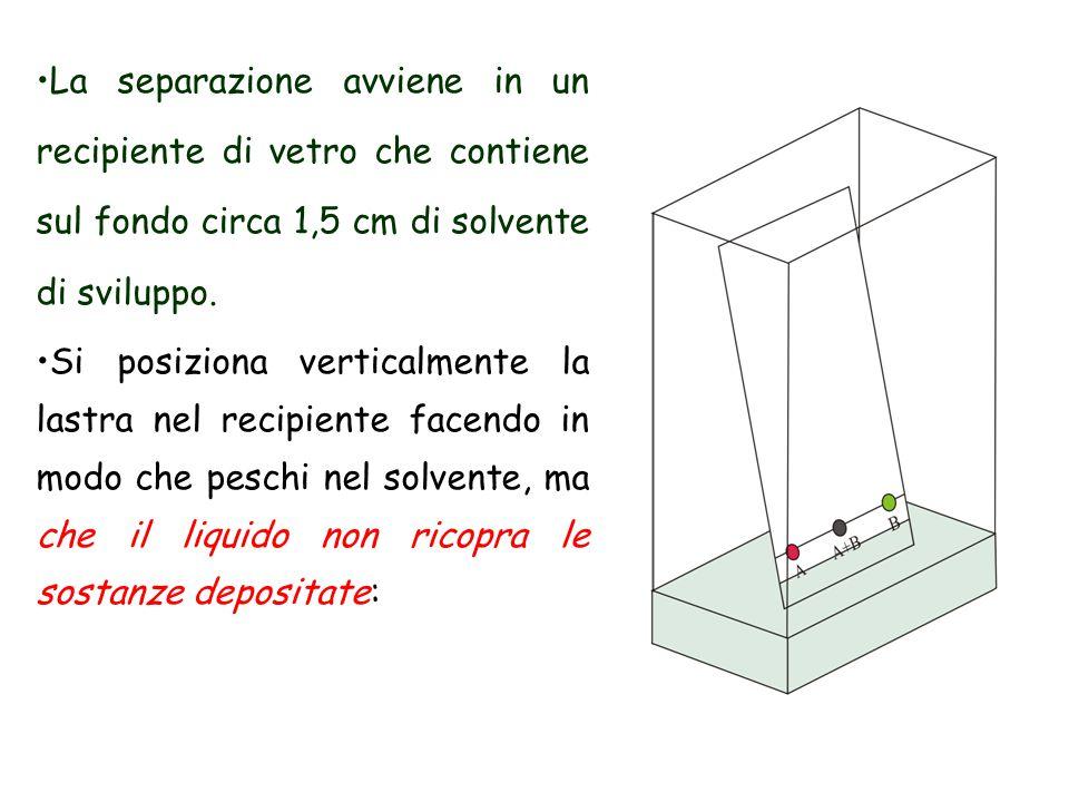 La separazione avviene in un recipiente di vetro che contiene sul fondo circa 1,5 cm di solvente di sviluppo.