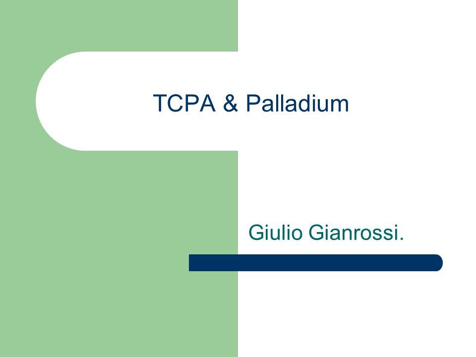TCPA & Palladium Giulio Gianrossi.