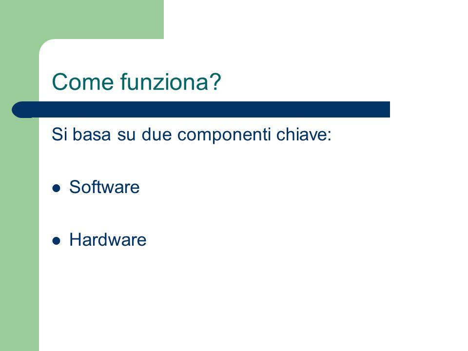 Come funziona Si basa su due componenti chiave: Software Hardware