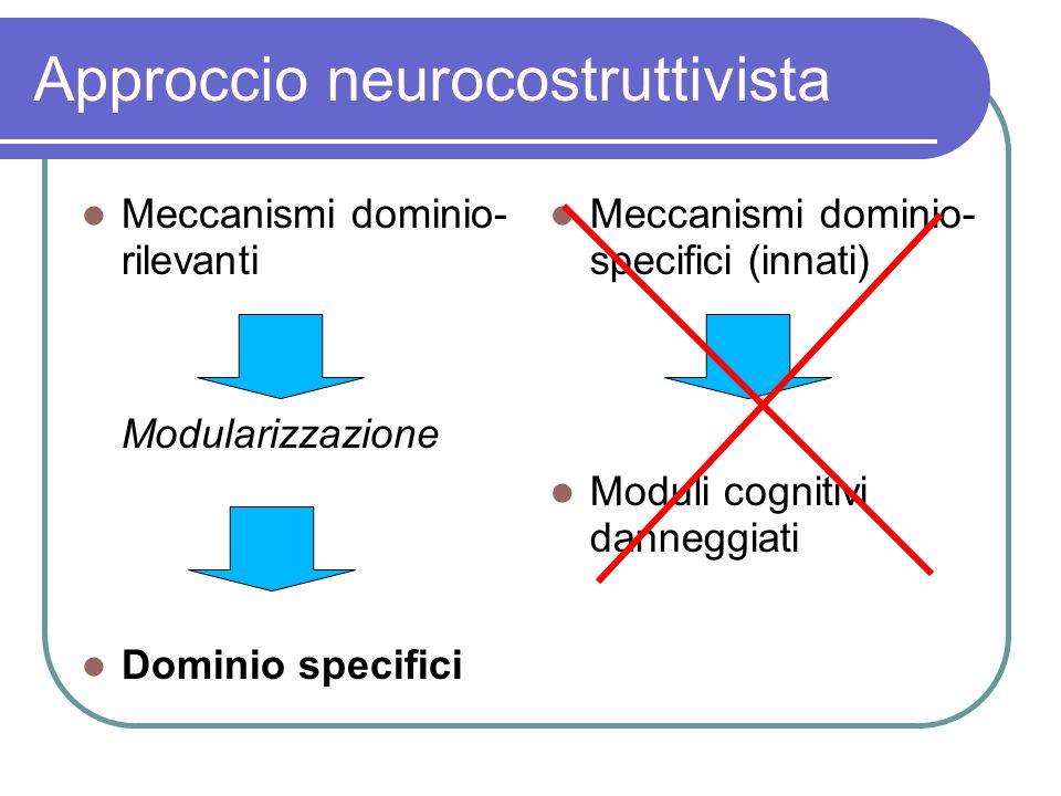 Approccio neurocostruttivista